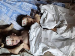 françois marc,bachar el assad,syrie