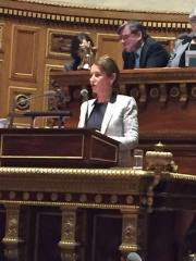 projet de loi de transition énergétique pour la croissance verte,ségolène royal,conférence de rio sur le climat