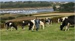 inégalités,justice sociale,agriculteurs,agricultrices,petites retraites