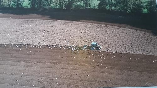 françois marc,agriculture,accaparement des terres,sénat